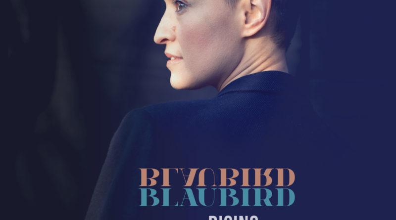 blaubird rising la fin de la tristesse chronique