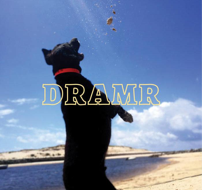 DRAMR