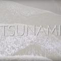 tsunami Mair-Claire Neveu quelques mots 11