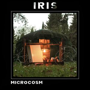 Iris microcosm